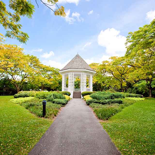 Singapore, Botanic, Gardens, UNESCO, World, Heritage